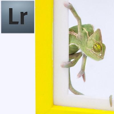 Curso de Edición de Fotografía Lightroom
